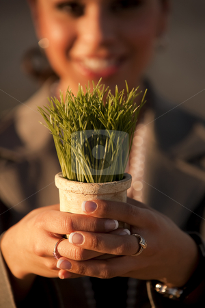 Woman holding plastic grass in pot stock photo, Shallow focus shot of woman holding plastic grass in pot by Scott Griessel