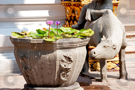 Water lilies in stone urn stock photo, Stone urn and sculpture at buddhist temple by Shi Liu