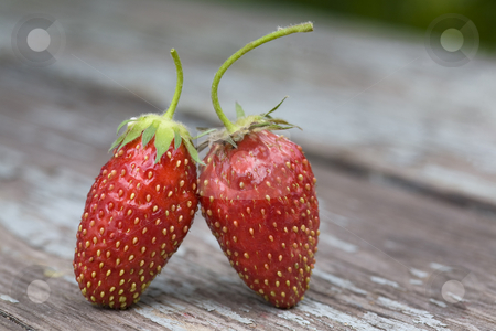 Two strawberries stock photo, Two strawberries standing on the wooden table by Valery Kraynov