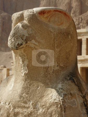 Horus  stock photo, Steinerne Horusstatue bei Aufgang zu Tempelanlage / stone statue of Horus at entrance to temple complex by Thomas K?