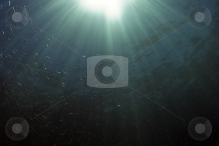 Sun Rays stock photo, Sea of Cortez by Greg Amptman