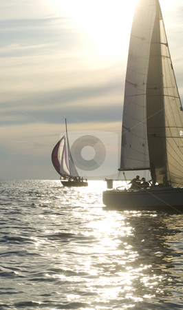 Sunset sailing stock photo, Sailboats riding the wind into the sunset by Jonathan Hull