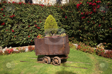 Ore Mining Car Garden Guanajuato Mexico stock photo, Mine Ore Car Guanajuato Mexico in Garden.  Guanajuato has one of the oldest silver mines in North America, and as a result, abandoned mine cars are in gardens all over Guanajuato. by William Perry