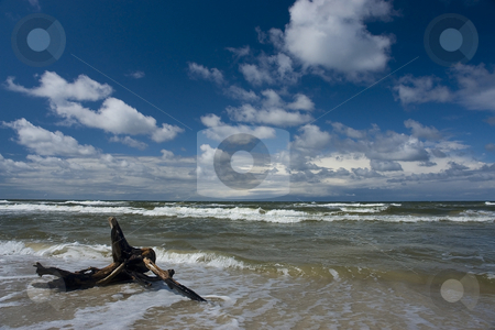 Baltic Sea stock photo, A beautiful beach in Baltic Sea, Poland by Adam Kraszewski