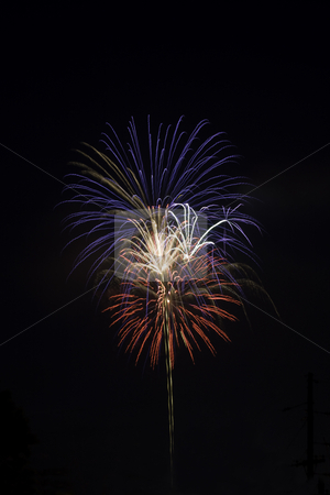 Red, white and blue fireworks against a black sky stock photo, Red, white and blue fireworks light a black night sky vertical by Stephen Goodwin