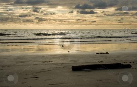 Horizon stock photo, Evening summer sun on the beach by Marc Torrell