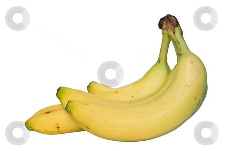 Bananas stock photo, Four ripe banans isolated on white background by ANTONIO SCARPI