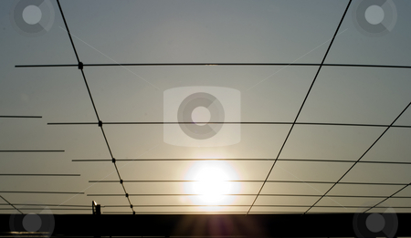 Sun in the cage stock photo, A view of the sun in between bars by Fabio Alcini