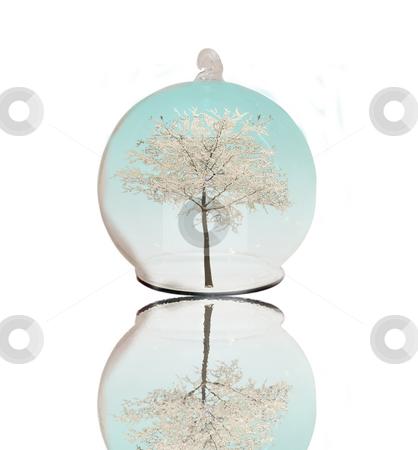 Winter tree under a glass sphere stock photo, White winter treefull of snow  under a glass sphere by Fabio Alcini