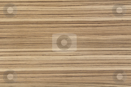 Zebrano stock photo, Zebrano wood, texture/background by Anders Peter