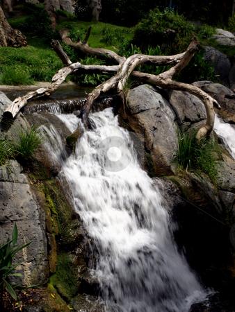 Waterfall over boulders in lush landscape stock photo, Rushing waterfall over boulders in lush foliage by Jill Reid