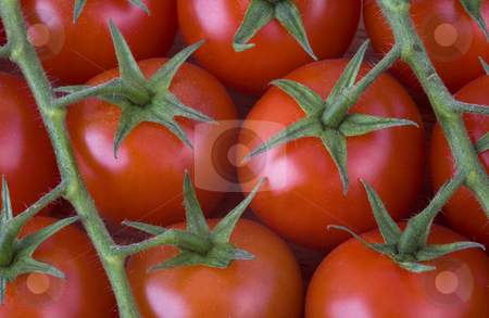 Red cherry tomatoes on the vine stock photo, Red cherry tomatoes on the vine by Valery Kraynov