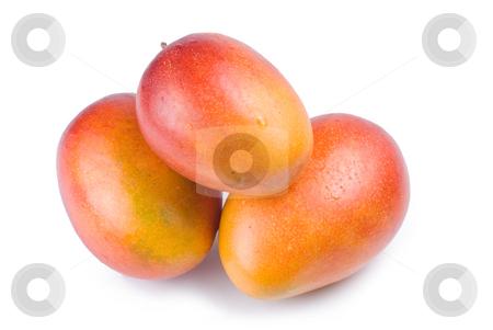 Isolated mango fruit stock photo, Isolated mango fruit on white background by Lawren