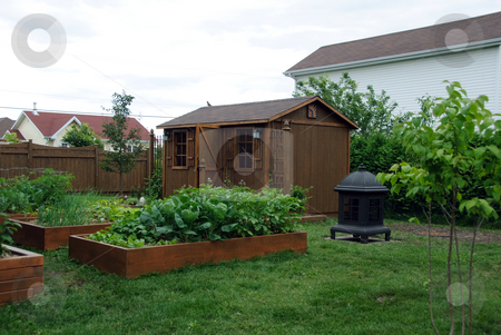 Square foot gardening stock photo, A Square foot gardening set-up in a typical back yard by Alain Turgeon