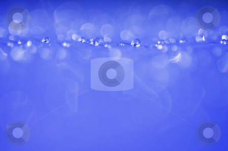 Blue droplets stock photo, Blue droplets, great background. by Kristen Wood