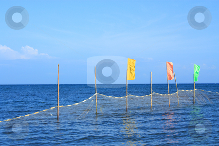 Beach flags stock photo, Warning flags for jelly fish protection by Claro Alindogan