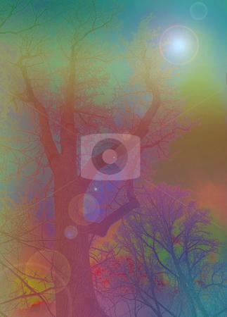 Psychedelic Nature Scene - Digital Art stock photo, Psychedelic Nature Scene - Digital Art by Dazz Lee Photography