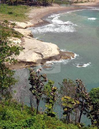 Lush tropical cove in St. Lucia stock photo, View down towards a lush tropical cove in St. Lucia by Jill Reid