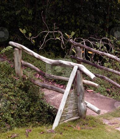 Wooden bridge in lush foliage stock photo, A wooden bridge and railing in lush foliage by Jill Reid
