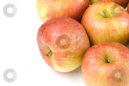 Delicious apple fruit stock photo, Fresh and delicious apple fruit by Lawren