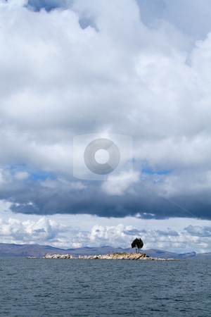 Titicaca Lake, Bolivia stock photo, Lonely tree on an island on the lake Titicaca in Bolivia by Philip Muller