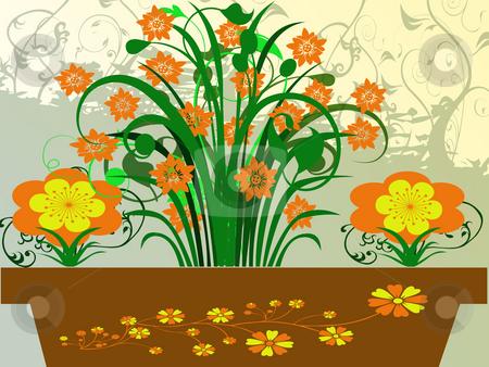 Flowerpot stock photo, Flowerpot by Minka Ruskova-Stefanova
