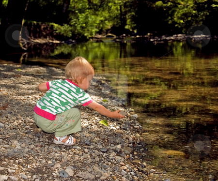 Toddler Girl Putting Rock in Stream stock photo, This young toddler girl is putting a rock into a beautiful wooded stream as she's discovering nature. by Valerie Garner