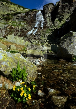Mountains waterfall stock photo, Mountains waterfall with yellow flowers in foreground by Juraj Kovacik