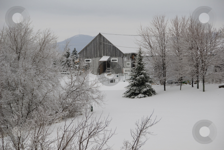 Winter scene stock photo, Winter scene showing fresh snow in a back country field by Alain Turgeon