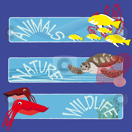 Fish banners 4 stock vector clipart, Three tropical fish banners no text indicate sea world creatures by Karin Claus