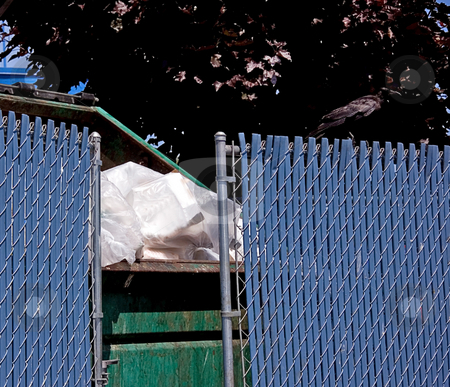 Full Garbage Dumpster With Fence stock photo, This shot is a full garbage dumpster filled with trash and surrounded by a blue fence. by Valerie Garner