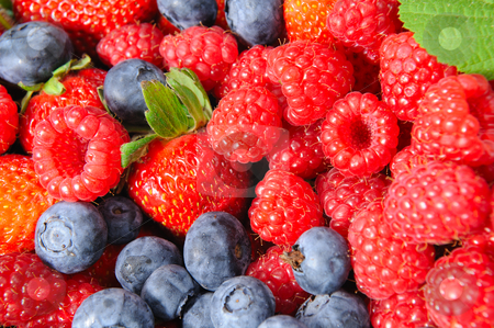 Berry Closeup stock photo, Assorted seasonal berries including blueberry, strawberry and raspberry by Lynn Bendickson