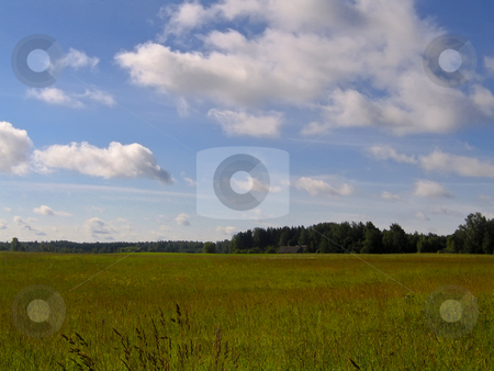 Wide open countryside stock photo, A beautiful rural landscape against a blue cloudy sky by Alessandro Rizzolli