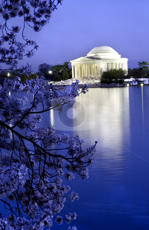 Jefferson Memorial with Cherry Blossoms  stock photo, Jefferson Memorial with Cherry Blossoms, tidal basin with reflections, Washington DC, District of Columbia by William Perry