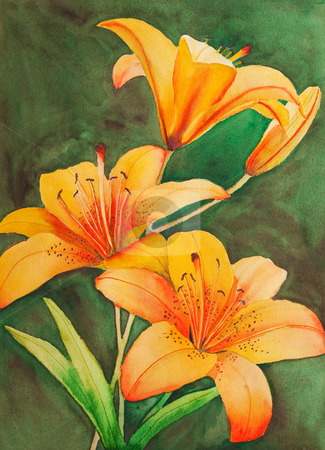 Tiger Lilies stock photo, An original, watercolor painting of Saskatchewan's provincial flower, the tiger lily. by Brenda Carson