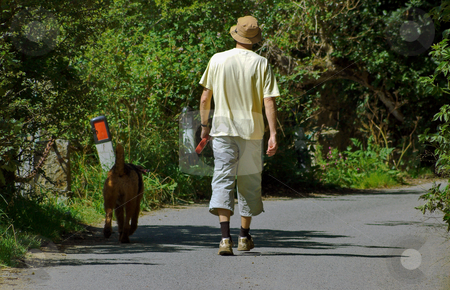 Male Walking with Dog stock photo, Male walking Dog along a leafy lane in bright sunshine by Robert Ford