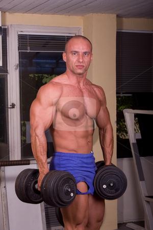 Bodybuider training  stock photo, Bodybuider training in gym by Istv??n Cs??k
