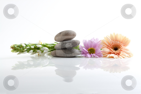 Flowers and stones - spa theme stock photo, A spa theme still life with river stones and flowers, isolated on white with reflections by Alexander Zschach