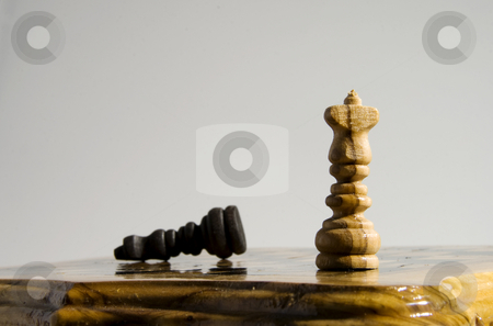 Checkmate stock photo, White king standing after the victory, black king down by Fabio Alcini
