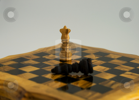 Chess stock photo, White king standing after the victory, black king down by Fabio Alcini
