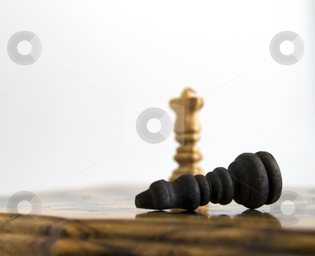 Loser stock photo, White king standing after the victory, black king down by Fabio Alcini