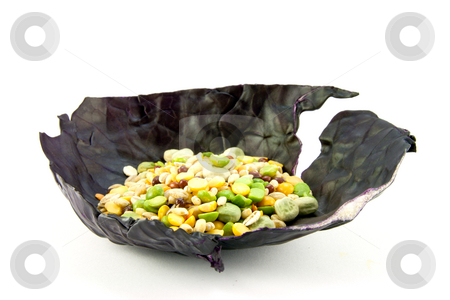 Soup Pulses in a Cabbage Leaf stock photo, Pile of soup pulses in a red cabbage leaf on a white background by Keith Wilson