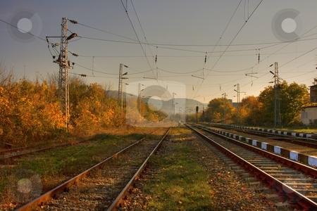 Railroad stock photo, Railroad in autumn forest by Minka Ruskova-Stefanova