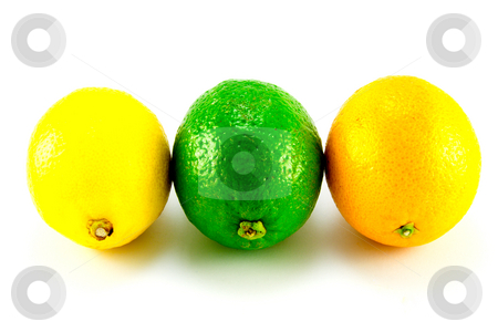 Lemon, Lime and Orange in a Line stock photo, Single whole lemon, Lime and Orange standing in a row on a white background by Keith Wilson