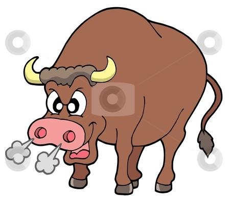 Angry bull stock vector clipart, Angry bull on white background - vector illustration. by Klara Viskova