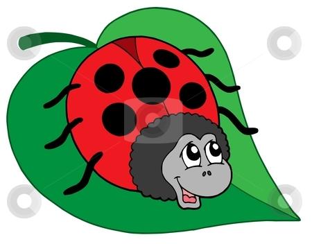 Cute ladybug on leaf vector illustration stock vector clipart, Cute ladybug on leaf - vector illustration. by Klara Viskova