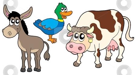 Farm animals collection 3 stock vector clipart, Farm animals collection 3 - vector illustration. by Klara Viskova