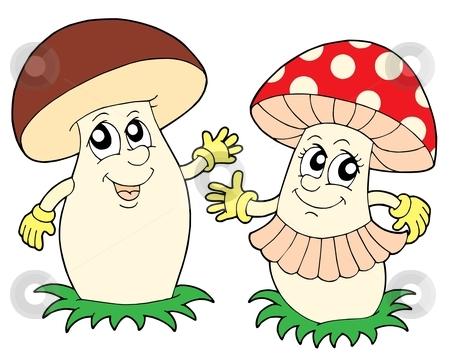 Mushroom and toadstool vector illustration stock vector clipart, Mushroom and toadstool - vector illustration. by Klara Viskova