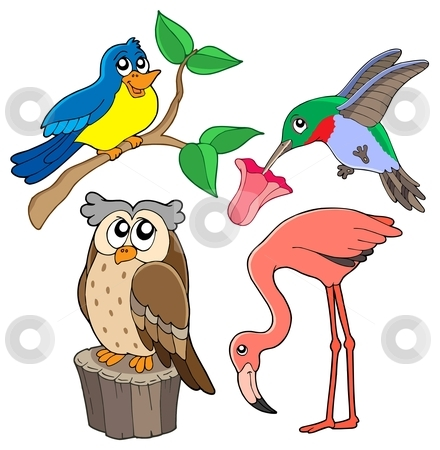 Various birds collection 02 stock vector clipart, Various birds collection 02 - vector illustration. by Klara Viskova