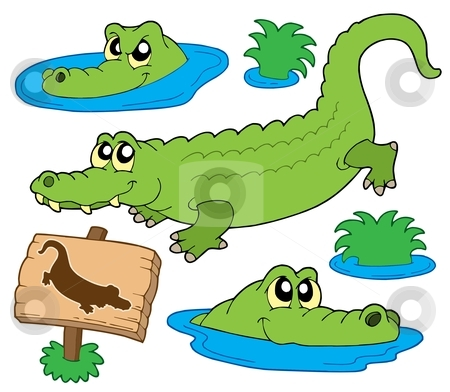 Crocodile collection stock vector clipart, Crocodile collection on white background - vector illustration. by Klara Viskova